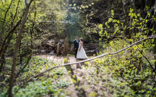 Profesionalus vestuvių fotografas